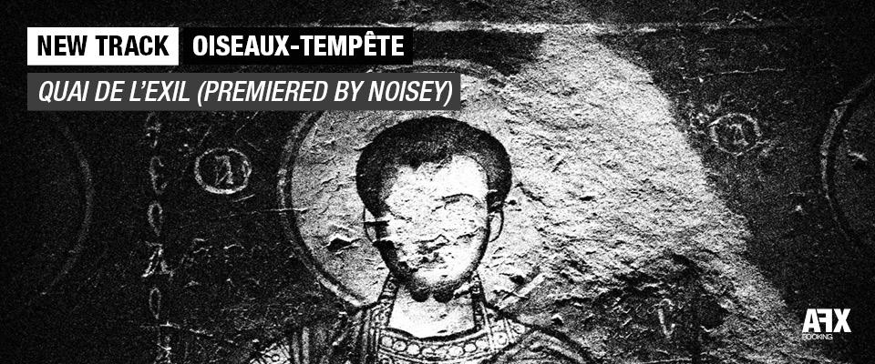 Oiseaux Tempete - Quai de l'exil
