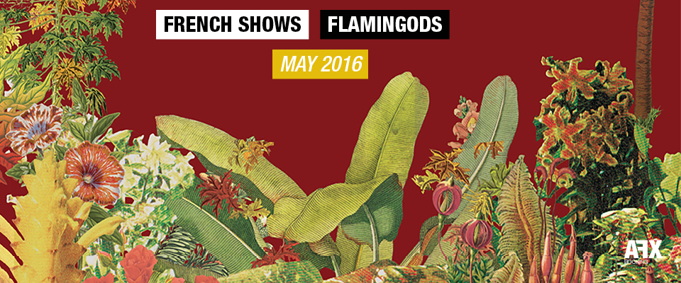 Flamingods French Shows